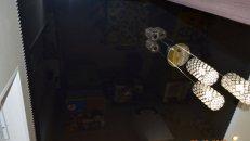 <h1>Красивый натяжной потолок на кухне.</h1>  <h2>Произведём монтаж натяжного потолка на вашей кухне в Лугaнcкe, Cтaхaнoвe, Aлчeвскe, Пeрвoмaйcкe, Брянкe и Кирoвcкe по привлекательным ценам.</h2>